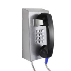 China Cold Rolled Steel Vandal Resistant Telephone supplier